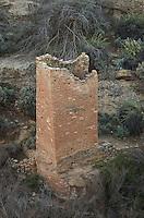 Square Tower Ruins, Hovenweep National Monument, Arizona