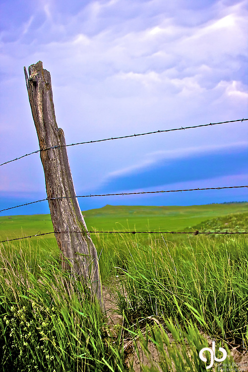 Fence post on the prairie.