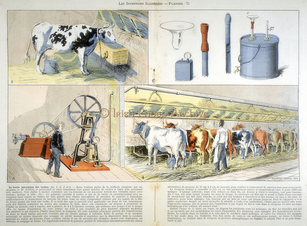 Milking  parlour equipped with Thistle suction and pulsation milking machine, 1895.  Devised by Dr Alexander Shields of Glasgow, Scotland, in 1895, the Thistle was considered too expensive and was not developed, although subsequent machines used the same principle. At 3 is a vacuum pump powered by a 4-5 hp stationary engine. From 'Les Inventions Illustrees' (Paris, September 1899). Chromolithograph.