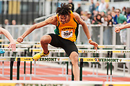 UVM's Mallory Duncan competes in the 110 meter hurdles during the first day of the America East Track and Field Championship at the Frank H. Livak Track and Field Facility on Saturday May 3, 2014 in Burlington, Vermont. (BRIAN JENKINS, for the Free Press)