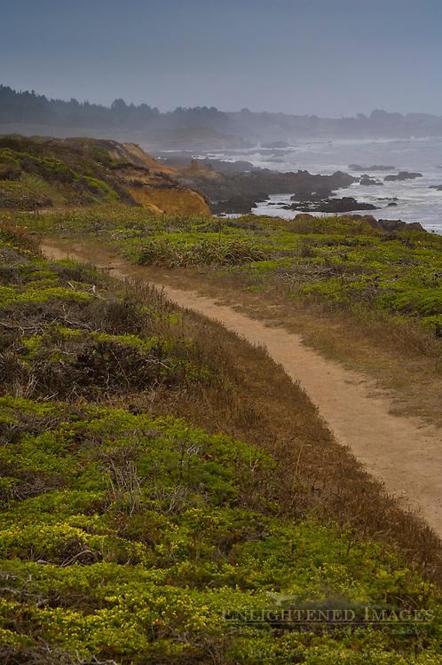 Coastal Trail at Bean Hollow State Beach, near Pescadero, San Mateo Coast, California