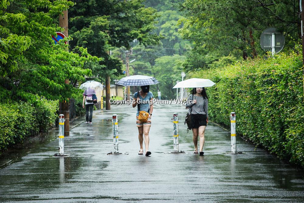 Girls walk under the rain in Kyoto Prefectures, Japan