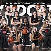 Basketball (Varsity) - Poster