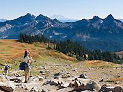 Tatoosh Range, Mount Rainier National Park, Washington, USA