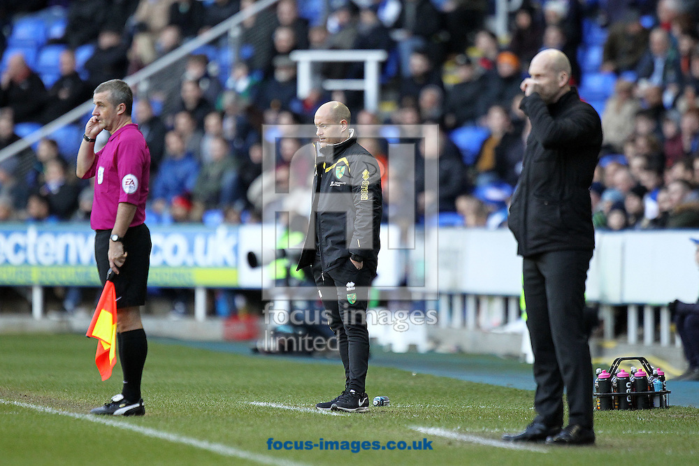 Norwich Manager Alex Neil and Reading Manager Jaap Stam during the Sky Bet Championship match at the Madejski Stadium, Reading<br /> Picture by Paul Chesterton/Focus Images Ltd +44 7904 640267<br /> 26/12/2016