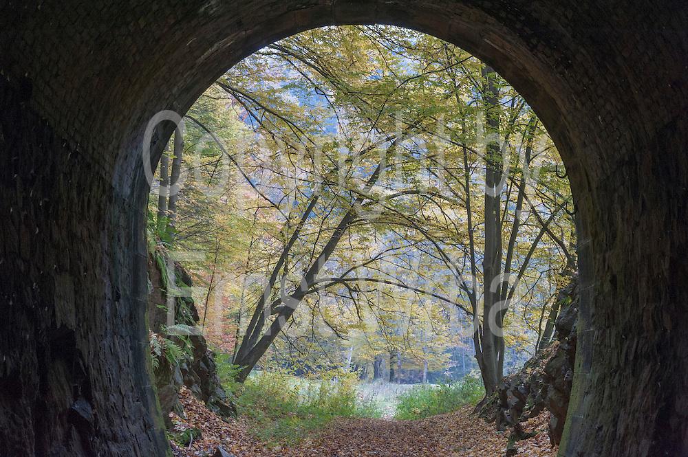 Tunnel der Schwarzbachtalbahn, Kohlmühle, Hohnstein, Sächsische Schweiz, Elbsandsteingebirge, Sachsen, Deutschland   tunnel Schwarzbachtal railway, Kohlmühle, Hohnstein, Saechsische Schweiz, Saxon Switzerland, Saxony, Germany
