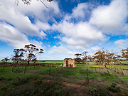 Somewhere north of Adelaide, I came across several abandoned farmhouses and outbuildings, even as the farmland around them was clearly still being cultivated -