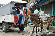 Children ride the back of a truck, near two loaded donkeys, in the town of Naya Pul, an important gateway to the Annapurna Conservation Area, in Nepal.