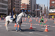 A police horse watches the road in Asakusa  as runners pass by during the  10th Tokyo Marathon took place on a fine spring day in Tokyo Japan. Sunday February 28th 2016. Thirty-six thousand runners took part with Ethiopian,  Feyisa Lilesa winning the  men's competition and  Kenyan, Helah Kiprop victorious in the women's race.