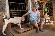 EVA RUPPEL sits at her front door on her rural property near Kandy, Sri Lanka, on Wednesday, February 21, 2018. Ruppel does not cage the approximate 170 rescued dogs, allowing them freedom to interact in small packs in multiple pens throughout her property, as well as inside her home. Ruppel created Tikiri Trust, with the financial assistance of her father, to rescue and rehome Sri Lanka's street dogs.<br /> <br /> <br /> It is impossible to visit Sri Lanka without seeing street dogs in nearly every public space, near hotels, guest houses and restaurants, schools, offices, markets, hospitals, police stations, bus terminals, railway stations, temples, etc. These dogs do not have their own homes, but they are usually highly tolerated and are typically fed collectively by people in a particular area.<br /> <br /> According to the NGO, Kandy Association for Community Protection through Animal Welfare (KACPAW), 100 unsterilized dogs will give rise to 3,000 dogs in one year. The Sri Lankan government, as well as several NGOs, work to spay/neuter animals, but there is need to educate the public and maintain funds to stay on top of their efforts.<br /> <br /> Eva Ruppel left Germany for a three-month visit to Sri Lanka, which included time in a Buddhist meditation retreat, and she remains in this island nation 37 years later.<br /> <br /> While married, Ruppel&rsquo;s husband asked that the couple keep only three dogs in their home at any one time, and she respected his wishes. This 60-something year old lost her husband to a ruptured brain blood vessel in 1995 when he was 51 years old, after nine years of marriage. After his death, she began rescuing more and more animals and she now lives with 170 dogs, plus a dozen or so cats.<br /> <br /> With the support of her father, she started Tikiri Trust. Her father passed away in 2011, and he left her an inheritance, which she continues to use to support her cause. <br /> <br /> Ruppel, who is fluent in German, English and Sinhala, said that she has found homes for &ldquo;hundreds, if not thousands&rdquo; of dogs. Sh