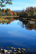 Autumn foliage and blue skies reflected in the still water of Northeast Creek, Acadia National Park, Maine.