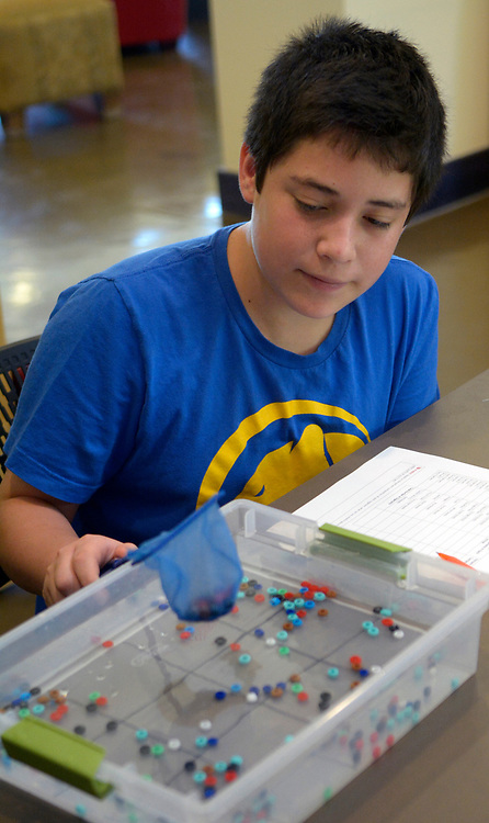 gbs070617h/RIO-WEST -- Stefano Castro, 13, of Albuquerque nets a portion of colored beads from a water filled tray in a macroinvertebrate sampling exercise during a Summer Explorations class at the Albuquerque Open Space Visitor Center onThursday, July 6, 2017. The sampling exercise showed how a bio assessment of the health of the Rio Grande is done.(Greg Sorber/Albuquerque Journal)
