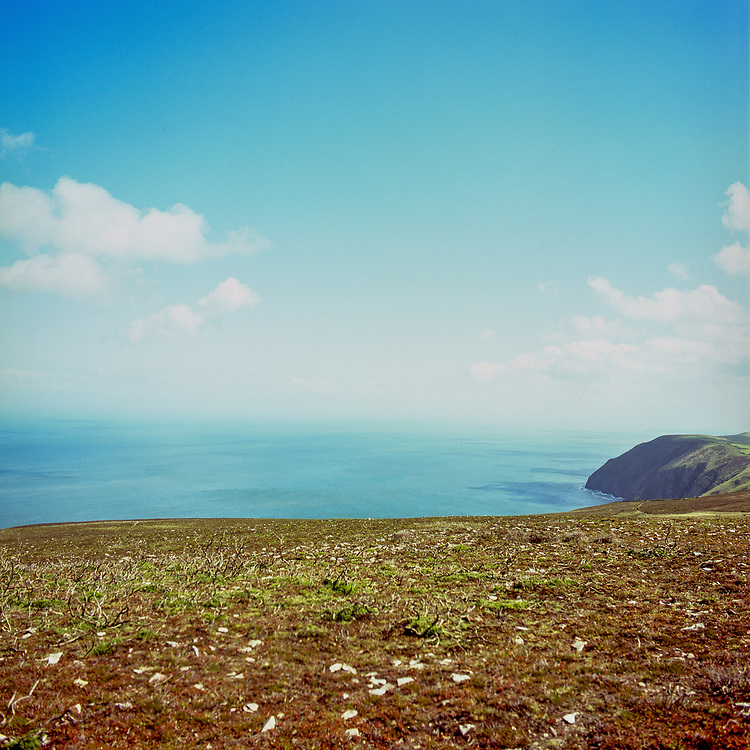 Dunkey Beacon, Exmoor, 2011 (Expired Film 2002)