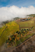 Aerial view over Colene Clemens , Chehalem Mountains, Willamette Valley, Oregon.
