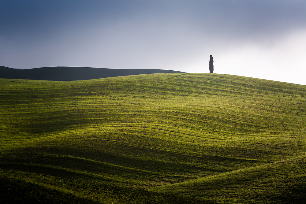 Landscape of Tuscany in spring