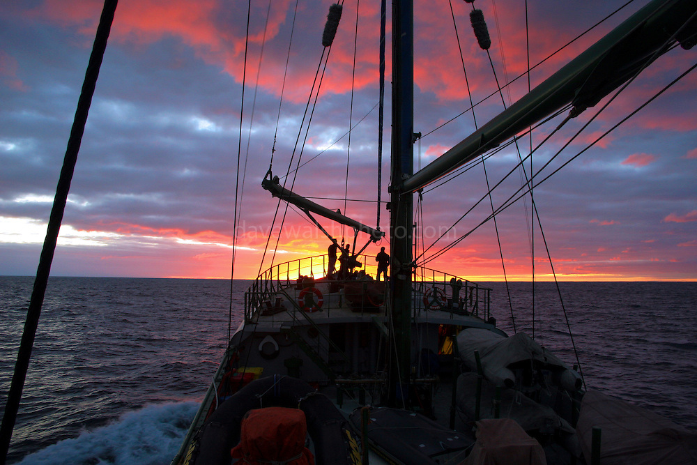 Rainbow Warrior, during bottom trawling campaign, Tasman Sea, off the coast of New Zealand,  June 2005