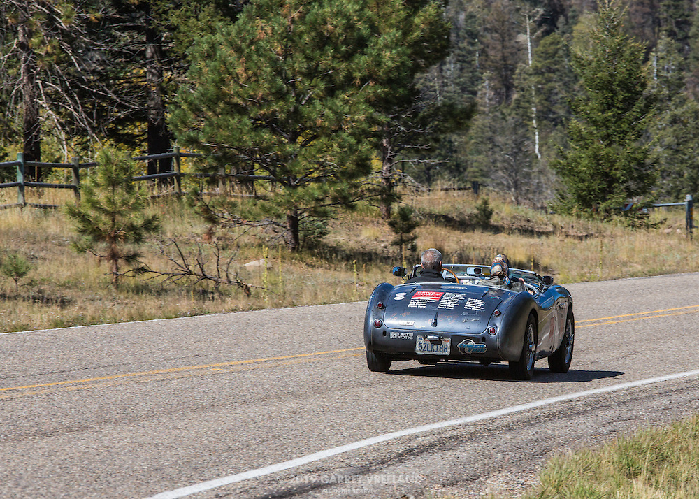 1953 Austin Healey BM-1 'Grace'-fully climbing to the Valles Caldera ... a little late. On the 2012 Santa Fe Concorso High Mountain Tour.