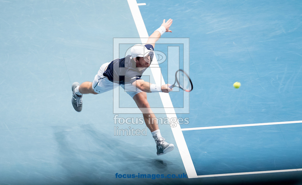 Andy Murray during the final of the Erste Bank Open at Wiener Stadthalle, Vienna, Austria.<br /> Picture by EXPA Pictures/Focus Images Ltd 07814482222<br /> 30/10/2016<br /> *** UK &amp; IRELAND ONLY ***<br /> EXPA-PUC-161030-0272.jpg