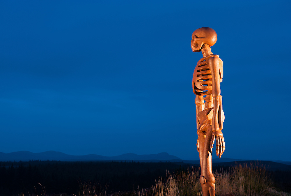 """""""The Unknown"""" sculpture, Borgie Glen, North Highland District, Forestry Commission, Scotland"""