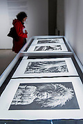 Genesis in Platinum and exhibition of large prints by Sebastiao Salgado. The inaugural edition of Photo London - London's first international photography fair, it aims to harness the growing audience for photography in the city and nurture a new generation of collectors. Photo London is produced by the consultancy and curatorial organisation Candlestar, known for their work with Condé Nast and the Prix Pictet photography award and touring exhibition. Photo London's public programme is supported by the LUMA Foundation.