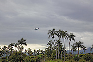 Russian aircraft flying over palm trees near La Union, Pinar del Rio, Cuba.