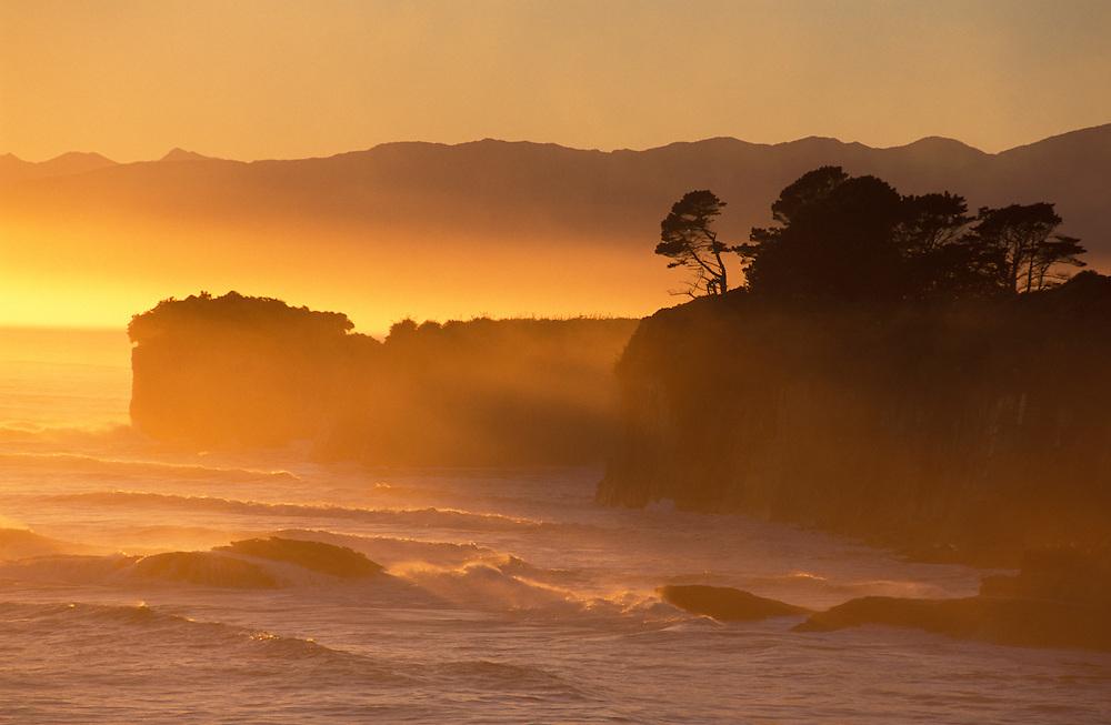 Coast at Cape Foulwind near Westport, West Coast, South Island, New Zealand