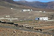 Group of houses in barren mountainous landscape, Jandia peninsula, Fuerteventura, Canary Islands, Spain