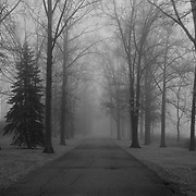 &quot;To Where it Leads&quot; 2 B&amp;W<br />