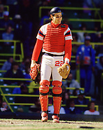 CHICAGO - 1986:  Joel Skinner of the Chicago White Sox looks on during an MLB game at Comiskey Park in Chicago, Illinois during the 1986 season . (Photo by Ron Vesely)  Subject:   Joel Skinner