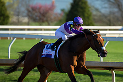 Irap with Julien Leparoux up win the 2017 Blue Grass (G2), Saturday, April 08, 2017 at Keeneland in Lexington.