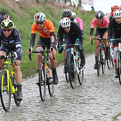 29-02-2020: Wielrennen: Omloop Nieuwsblad: Ninove: Sarah Gigante