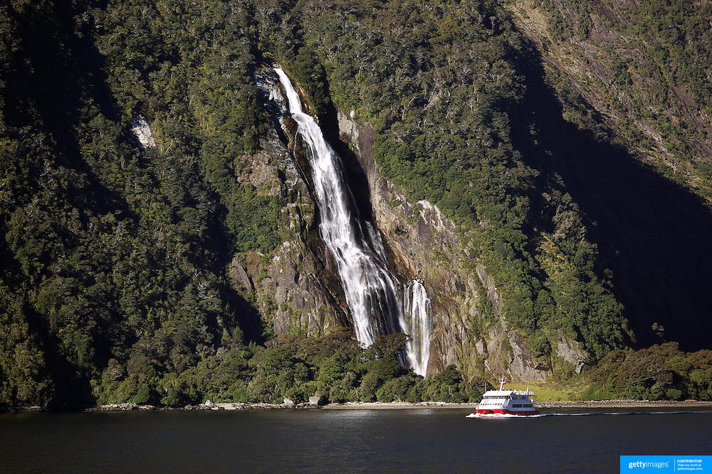 A tourist boat passes Lady Bowen Falls on Milford Sound. Milford Sound (Piopiotahi in Ma¯ori) is a fjord in the south west of New Zealand's South Island, within Fiordland National Park and the Te Wahipounamu World Heritage site. It has been judged the world's top travel destination and is acclaimed as New Zealand's most famous tourist destination..Milford Sound runs 15 kilometres inland from the Tasman Sea at Dale Point - the mouth of the fiord - and is surrounded by sheer rock faces that rise 1,200 metres (3,900 ft) or more on either side. Among the peaks are The Elephant at 1,517 metres (4,977 ft), said to resemble an elephant's head and The Lion, 1,302 metres (4,272 ft), in the shape of a crouching lion. Lush rain forests cling precariously to these cliffs, while seals, penguins, and dolphins frequent the waters and whales can be seen sometimes..Milford Sound sports two permanent waterfalls all year round, Lady Bowen Falls and Stirling Falls. After heavy rain many hundreds of temporary waterfalls can be seen running down the steep sided rock faces. .The beauty of this landscape draws thousands of visitors each day, with between 550,000 and 1 million visitors in total per year. This makes the sound one of New Zealand's most-visited tourist spots, and also the most famous New Zealand tourist destination.  Milford Sound, New Zealand. 29th April 2011. Photo Tim Clayton