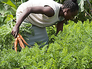 Elizabeth Anja has learnt a lot of farming techniques from her brother Barza.