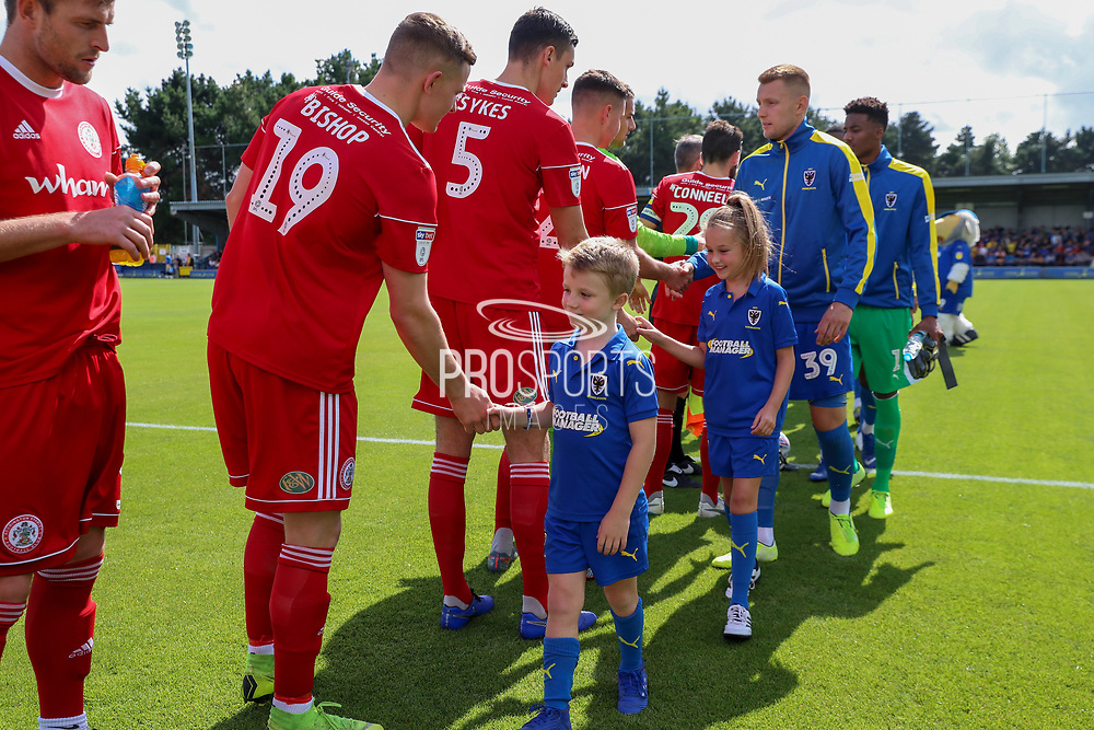 Mascot during the EFL Sky Bet League 1 match between AFC Wimbledon and Accrington Stanley at the Cherry Red Records Stadium, Kingston, England on 17 August 2019.