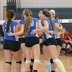 Photos by Tom Kelly IV<br /> East players celebrate a point during the Downingtown East vs Octorara volleyball game at Octorara on Wednesday October 16, 2013.