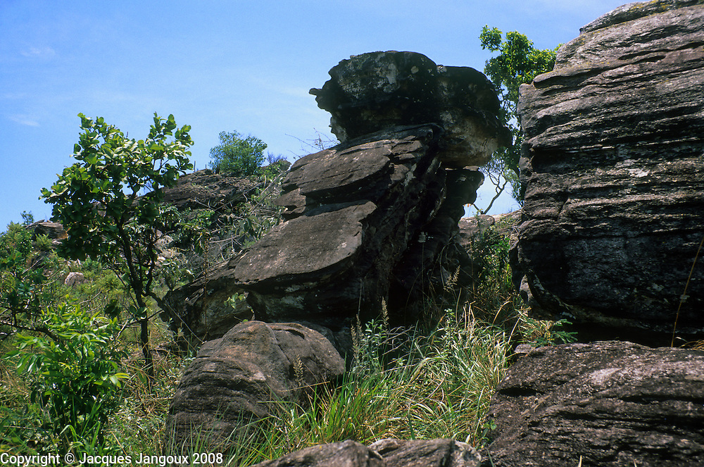 Rock outcrop  with cerrado vegetation (wooded savanna) in Parque Estadual (State Park) dos Pireneus near Pirenopolis, Brazilian Highlands, Goiás, Brazil