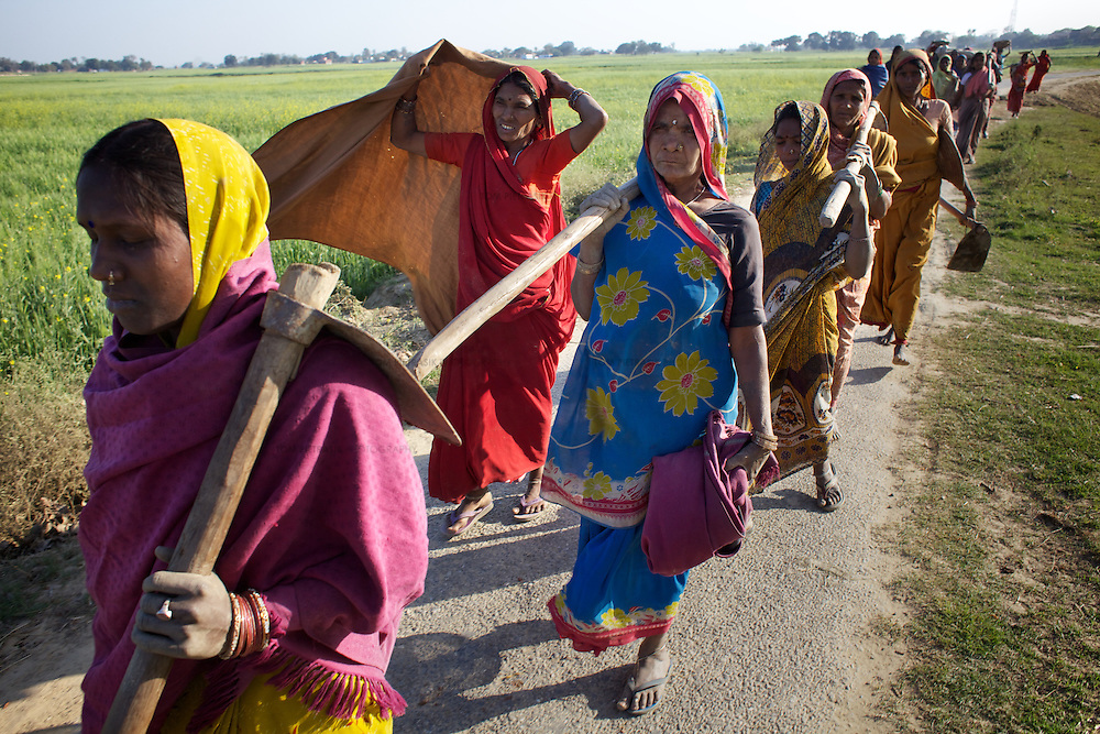 Women return home after undertaking work to strengthen a road as part of the NREGA (National Rural Employment Guarantee Scheme). By offering poor families up to 100 days work per day year, the NREGA has the potential to ensure that landowners are no longer the exclusive purveyors of work for the landless. Unfortunately the NREGA has suffered from administrative indifference and patchy implementation and the residents of Belauhi are lucky to be offered 12 days work per year as part of the scheme. <br /> <br /> Bypassed by government subsidies that direct resources towards the needs of larger land-owners, farmers in the hamlet of Belauhi used to only harvest two crops per year and one of these crops - the monsoon Khairf rice crop - would regularly be destroyed by rains. Training and advice provided by Oxfam partners GDS (Grameen Development Services) has allowed Belauhi's farmers to harvest three - and sometimes four - crops so increasing food security and allowing some to move beyond subsistence farming and begin selling farm produce. Crop varieties that can withstand the flooding of fields in the monsoon or the intense heat of summer, including the genetically modified NDR-97 variety of rice, are more suited to farming in an unpredictable climate. New crops including pulses and oil seeds have provided residents a more balanced diet. GDS train local farmers, including women, in new agricultural techniques: irrigation and drought resistant crops. GDS has also establish SHGs (Self Help Groups) and encourages the dissemination of new farming methods by supporting village meetings and workshops. <br /> <br /> Photo: Tom Pietrasik<br /> Belauhi, Marajganj District, Uttar Pradesh. India<br /> February 28th 2011