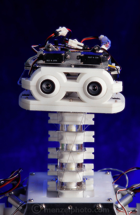 The robot, called Kenta, (Ken means tendon in Japanese) has a flexible spinal column that resembles that of the human body; 96 motors; a five-joint neck; a 10 joint spine (each with 3 degrees of freedom); and fast-moving stereo vision that can track a flesh colored object. The neck and torso are coordinated to respond in concert with the eye's movement. Student researchers create movements for the robot in simulation and then feed the simulations back to the robot. Professor Hirochika Inoue thinks that developing robots with this structure of incredibly decreased weight and fewer parts will reduce the cost and the complexity of robots in the future for more widespread application. Inoue-Inaba Robotic Lab, University of Tokyo, Japan.