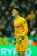Kepa Arrizabalaga (#1) of Chelsea shouts instructions during the Premier League match between Newcastle United and Chelsea at St. James's Park, Newcastle, England on 18 January 2020.
