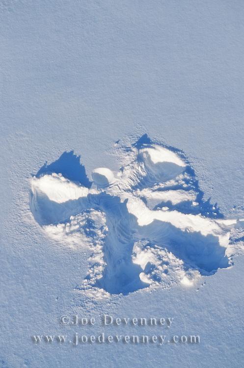 Snow angel in the freshly fallen snow. Jefferson, Maine