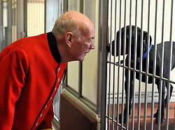 ©London News pictures. 24.02.2011. Chelsea Pensioners meet the dogs at Battersea Dogs and Cats Home. Starting in March, the Chelsea Pensioners will become well acquainted with the dogs and cats at the charity at Battersea Dogs and Cats home, when Battersea walks its dogs across the Thames River to spend time at the Royal Hospital. In turn, the charity will invite the veteran British Army soldiers in to interact with the many animals it takes in every year. Picture Credit should read Stephen Simpson/LNP