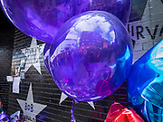 "22 APRIL 2016 - MINNEAPOLIS, MN: Purple balloons in front of Prince's star on the wall of 1st Ave in Minneapolis. Thousands of people came to 1st Ave in Minneapolis Friday to mourn the death of Prince, whose full name is Prince Rogers Nelson. 1st Ave is the nightclub the musical icon made famous in his semi autobiographical movie ""Purple Rain."" Prince, 57 years old, died Thursday, April 21, 2016, at Paisley Park, his home, office and recording complex in Chanhassen, MN.    PHOTO BY JACK KURTZ"