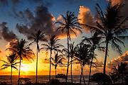 Sunrise Over Lydgate Beach Kauai