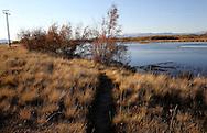 Silver Creek Preserve near Carey, ID