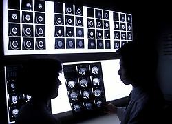 Stock photo of doctors examining x-ray film.