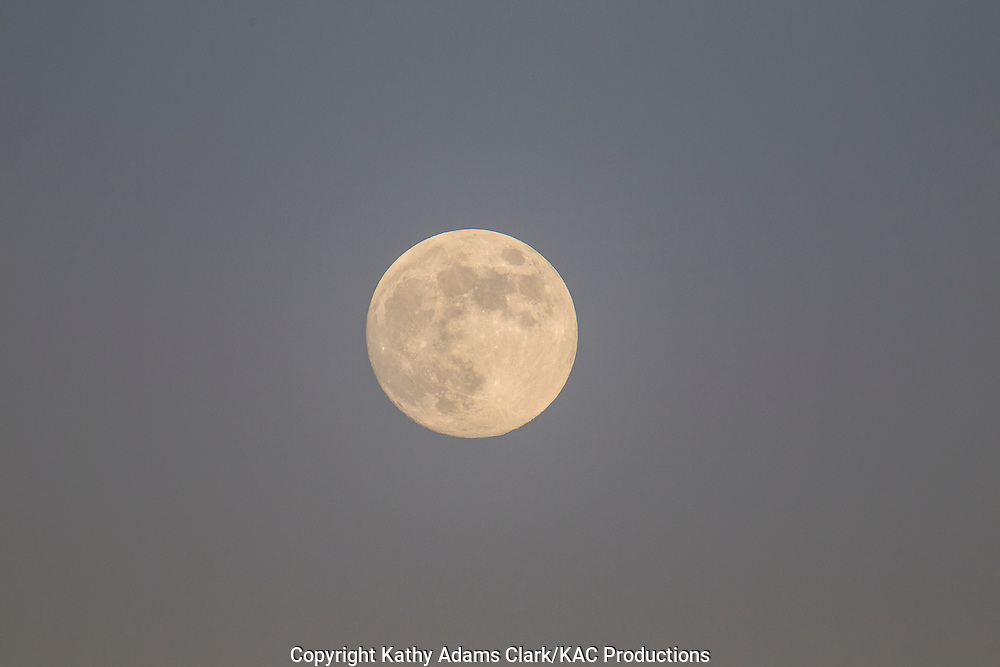 Full moon in the twilight sky on October 28, 2012, harvest moon.