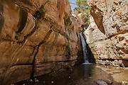 Ein Gedi sweet water springs, in the Judean desert, Israel, Waterfall in Wadi David nature reserve