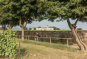 iTALY, ISEO LAKE, Franciacorta, Ca' del Bosco Vineyard overlooking the Castello di Passirano