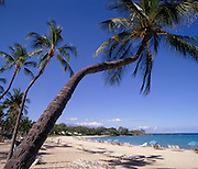 Kauna'oa Bay, Mauna Kea Hotel, Island of Hawaii, Hawaii, USA<br />