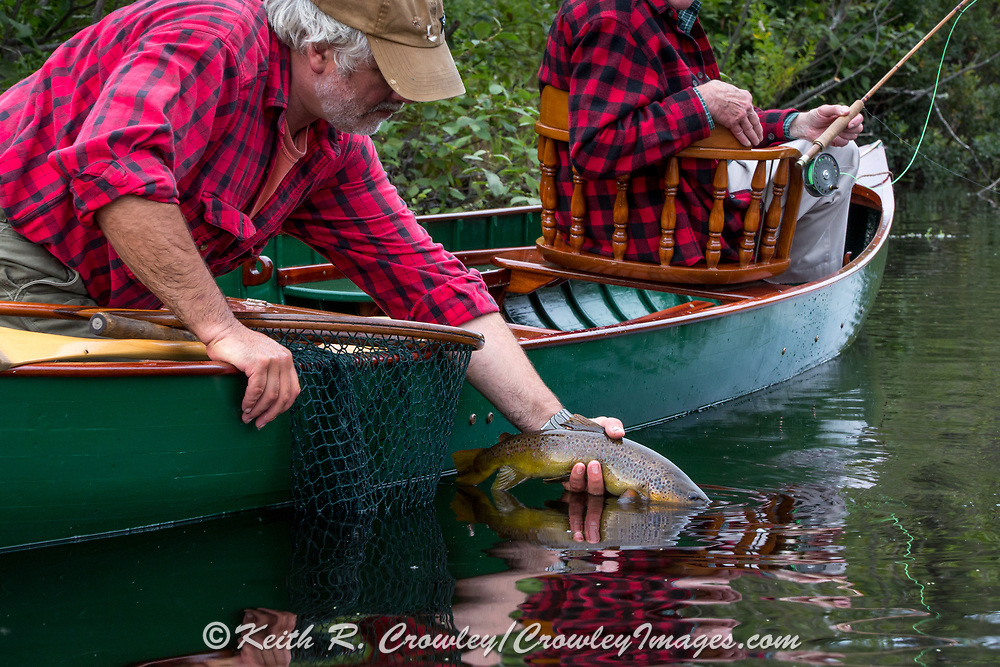 Brule River Guide Damian Wilmot releases a nice brown trout caught by angler Matson Holbrook while fishing from a 1900-era Lucius guide canoe restored by Wilmot.